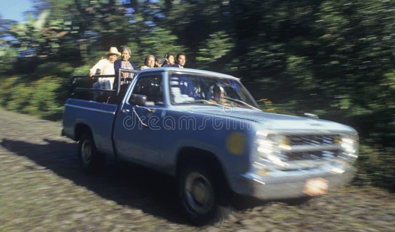 El paseo de los trabajadores de granja a trabajar adentro mueve hacia atrás del carro fotografía de archivo libre de regalías