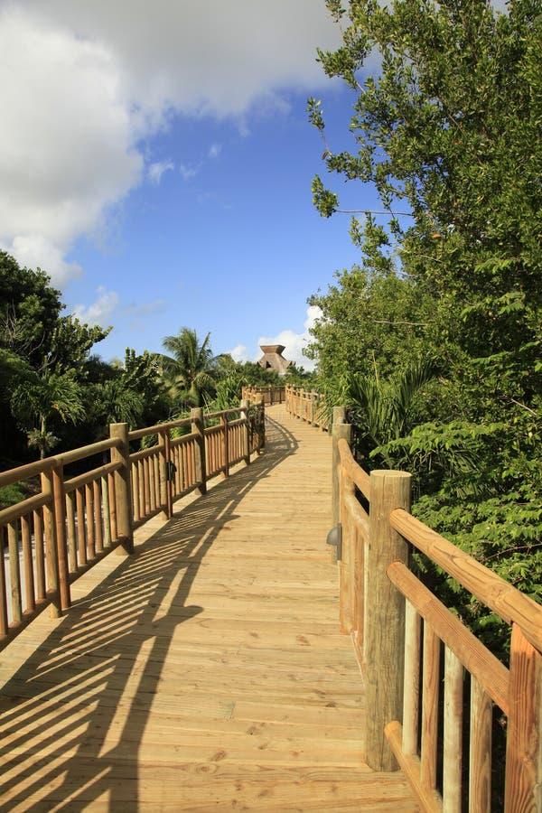 El paseo marítimo en el maya de Vidanta Riviera imagen de archivo libre de regalías