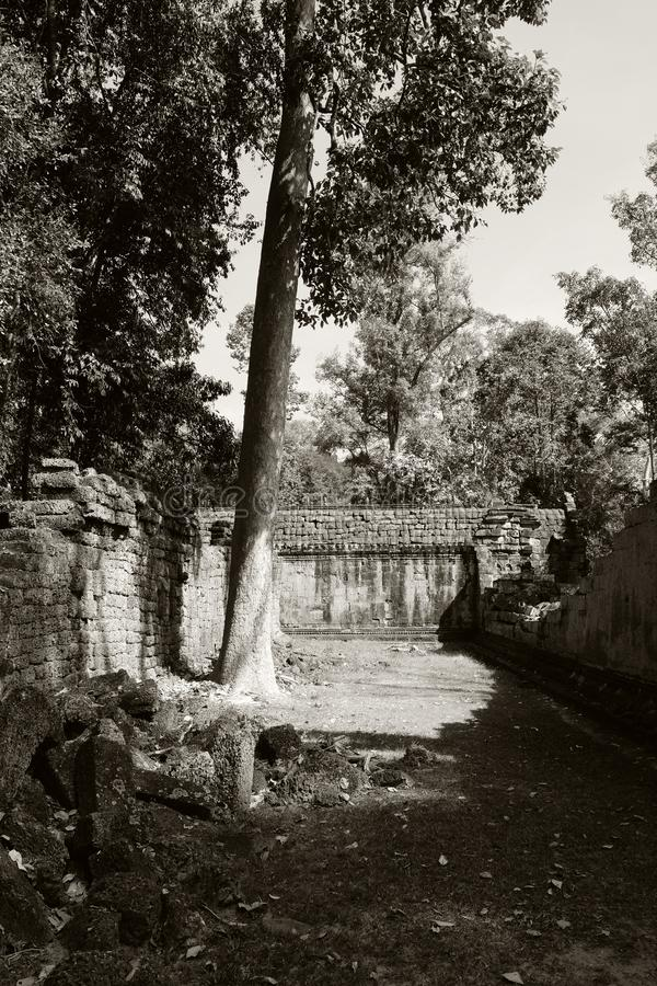 El patio del complejo dilapidado del templo en Indochina Ruinas antiguas en el bosque fotografía de archivo