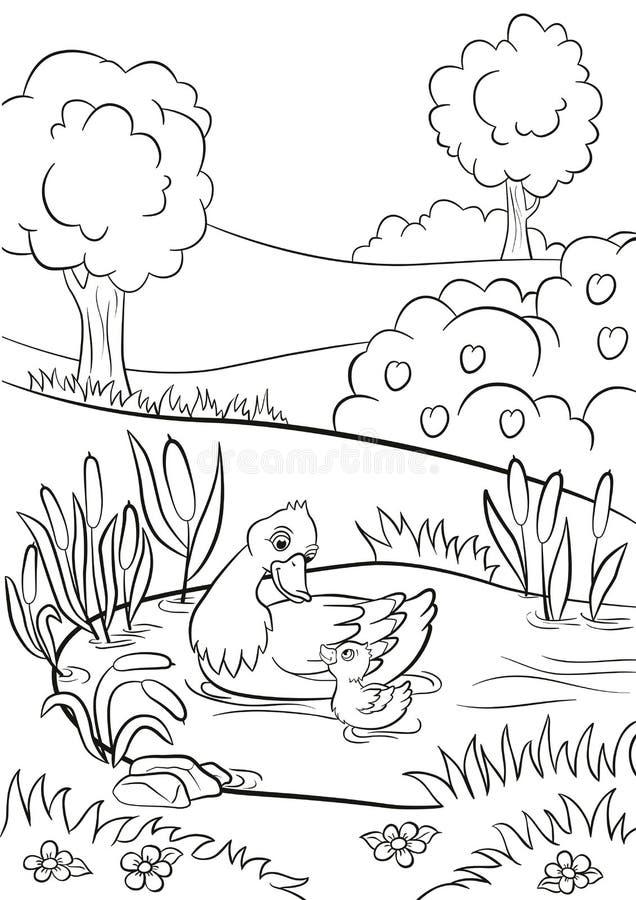 El pato bueno y el pequeño anadón lindo nadan en la charca ilustración del vector