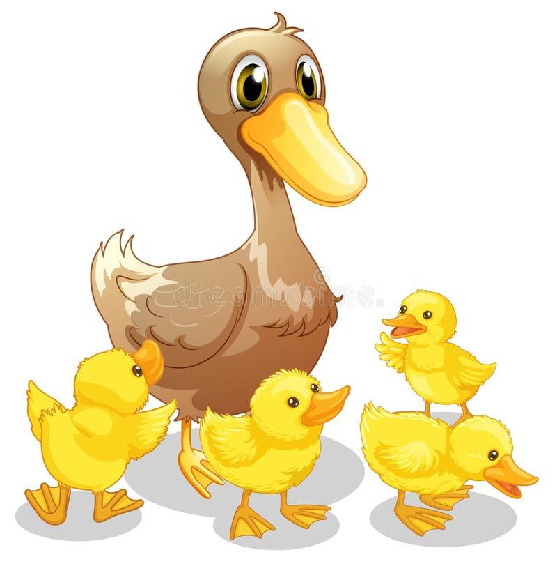 El pato marrón y sus cuatro anadones amarillos stock de ilustración