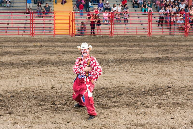 El payaso del rodeo se realiza para la muchedumbre en la precipitación foto de archivo