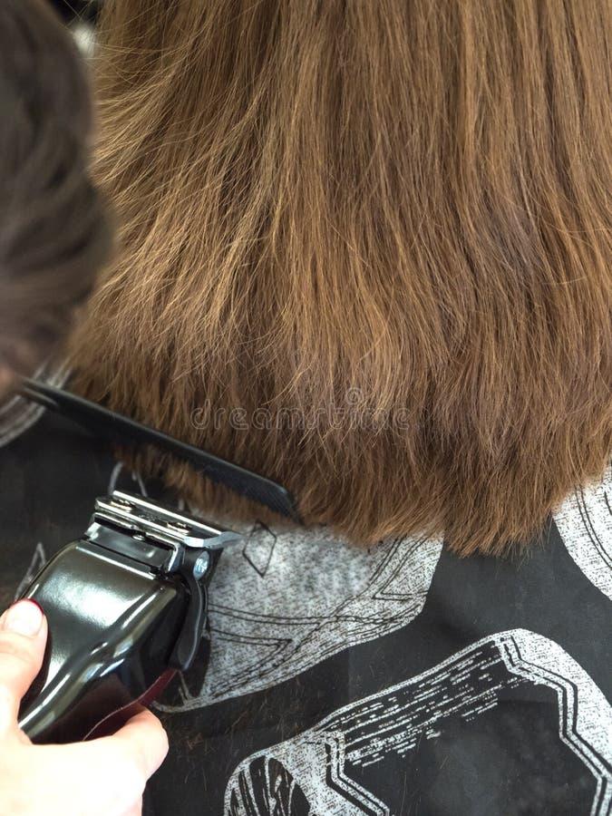 El peluquero corta a una mujer por podadoras de la barber?a imagen de archivo