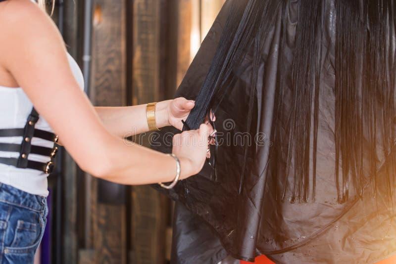 El peluquero del primer corta el pelo negro largo Departamento de belleza fotos de archivo