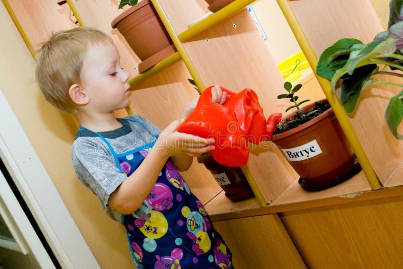 El pequeño ayudante. fotografía de archivo libre de regalías