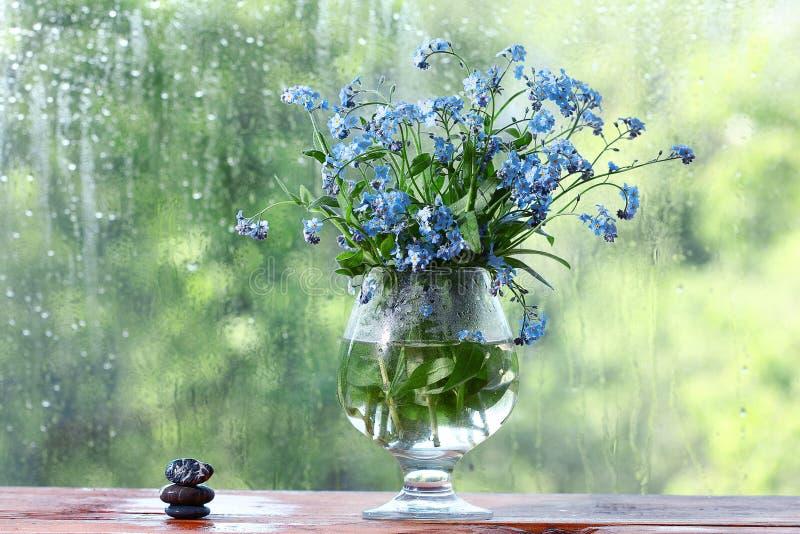 El pequeño azul florece el chocolate fotos de archivo libres de regalías