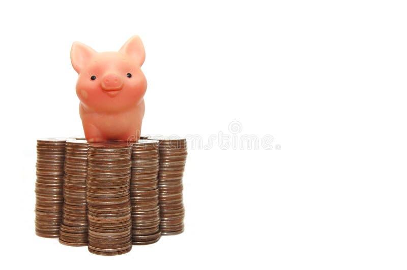 El pequeño cerdo protege su dinero fotos de archivo