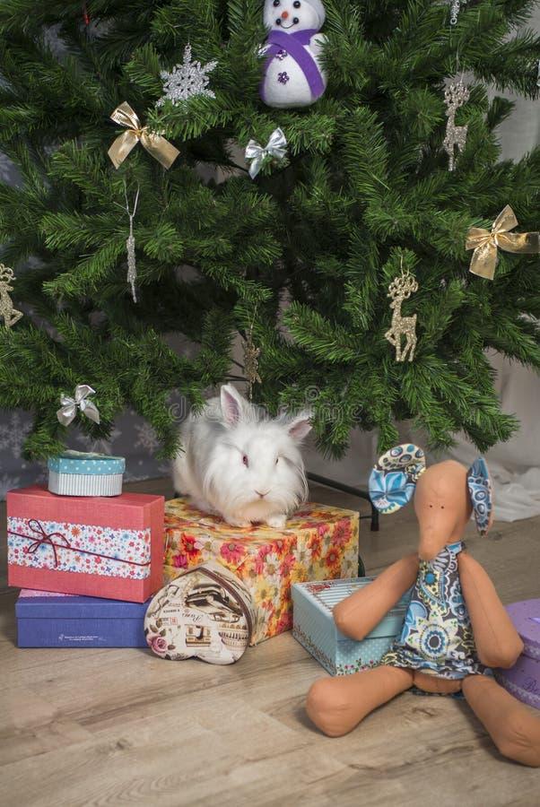El pequeño conejo se sienta debajo del árbol de navidad imagenes de archivo
