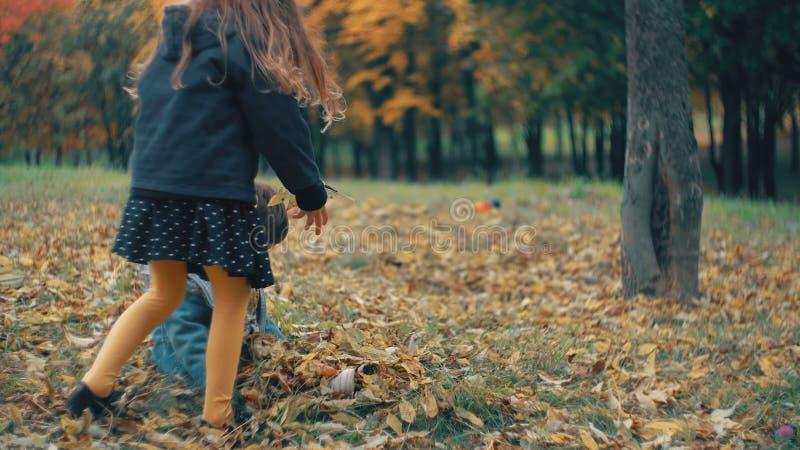 El pequeño hermano lindo y la hermana que juegan en el otoño parquean, los tiros de la muchacha en las hojas caidas amarillo 4k d metrajes
