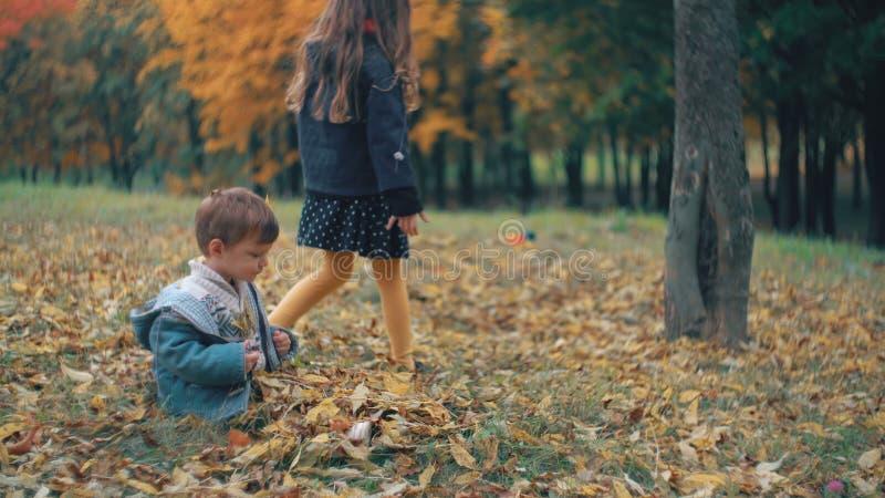 El pequeño hermano lindo y la hermana que juegan en el otoño parquean, los tiros de la muchacha en las hojas caidas amarillo 4k d almacen de video