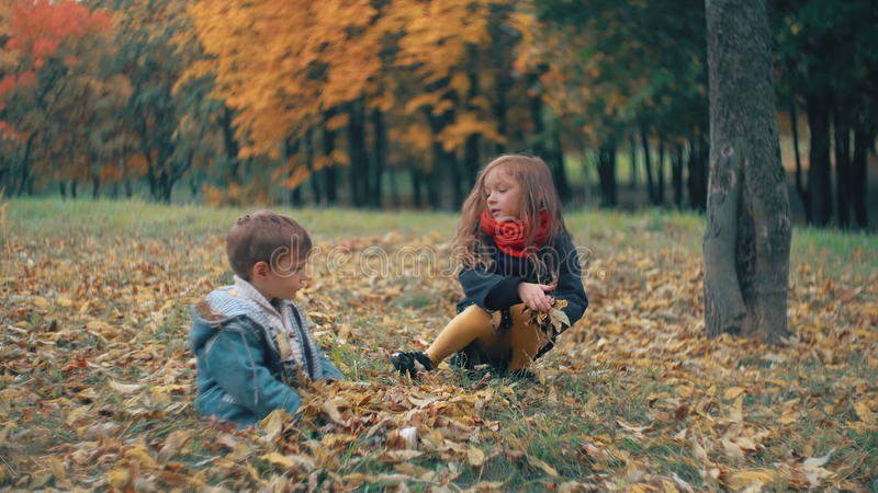 El pequeño hermano lindo y la hermana que juegan en el otoño parquean, los tiros de la muchacha en las hojas caidas amarillo 4k d almacen de metraje de vídeo