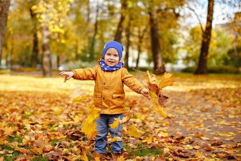 El pequeño muchacho adorable en chaqueta amarilla lanza para arriba las hojas de arce en a fotos de archivo