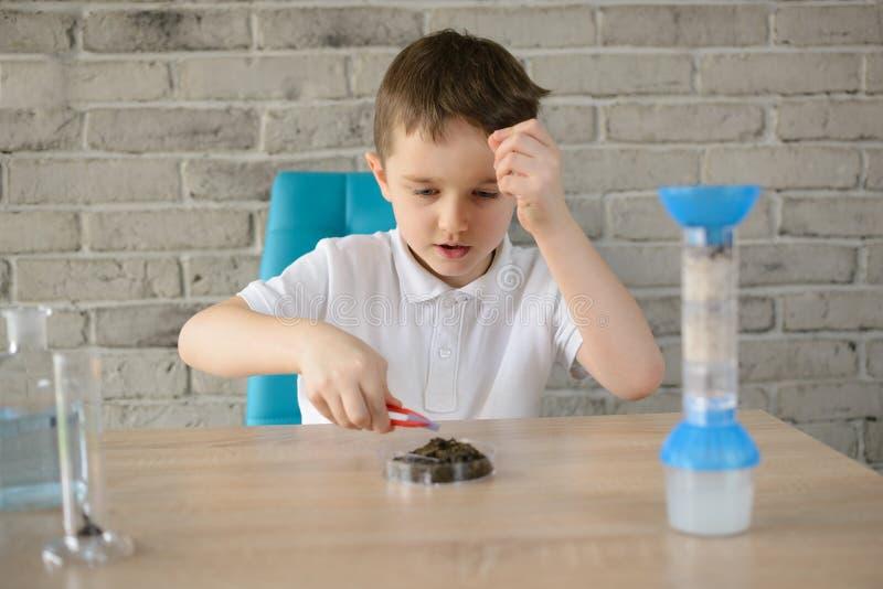 El pequeño muchacho de 6 años examina la acidez del suelo fotografía de archivo libre de regalías