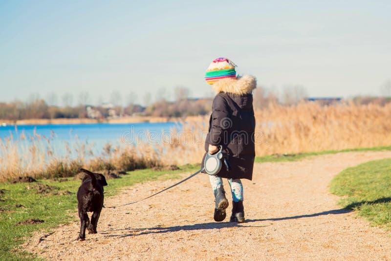 El pequeño niño está caminando un perrito del labrador retriever fotos de archivo