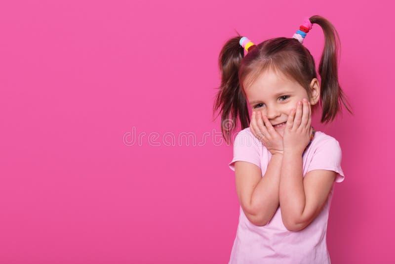 El pequeño niño positivo encantador con dos colas de potro y muchos scrunchies coloridos, vestidos en camiseta color de rosa, exp fotos de archivo
