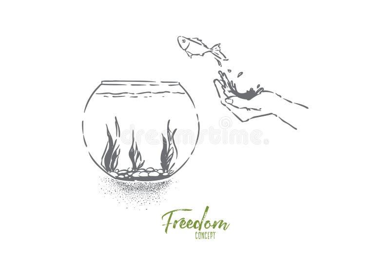 El pequeño pez de colores que saltaba en el fishbowl, mano dejó pescados ir, salto nacional del animal doméstico en el acuario de stock de ilustración