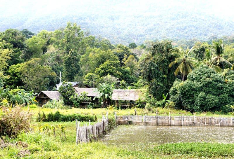 El pequeño pueblo en la selva tropical fotografía de archivo libre de regalías