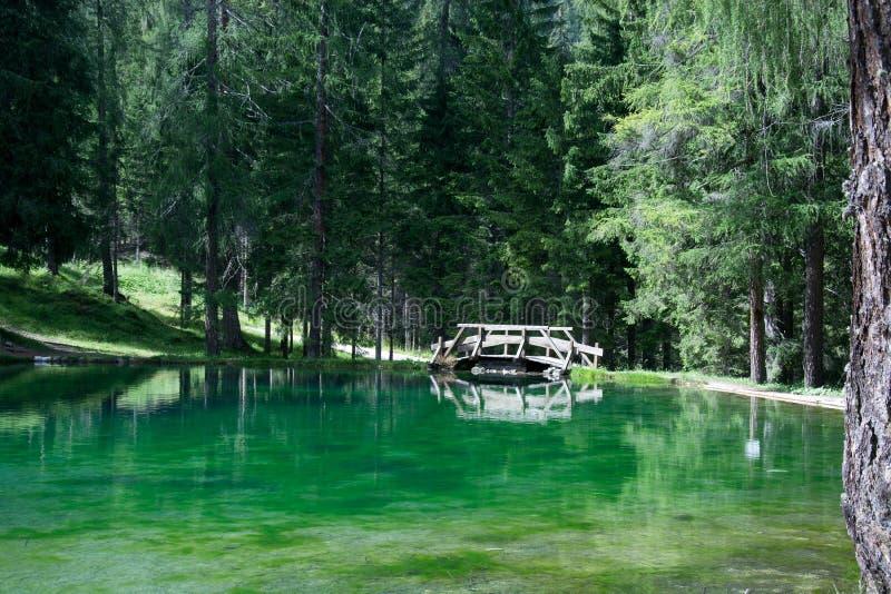 El pequeño puente en la trayectoria esmeralda del lago al día de verano foto de archivo libre de regalías