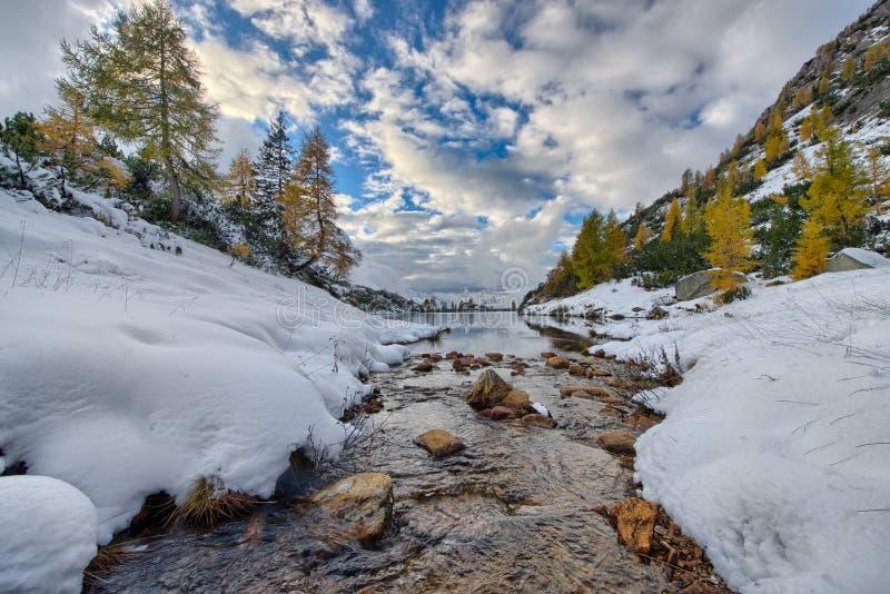 El pequeño río de la montaña entra en el lago fotografía de archivo
