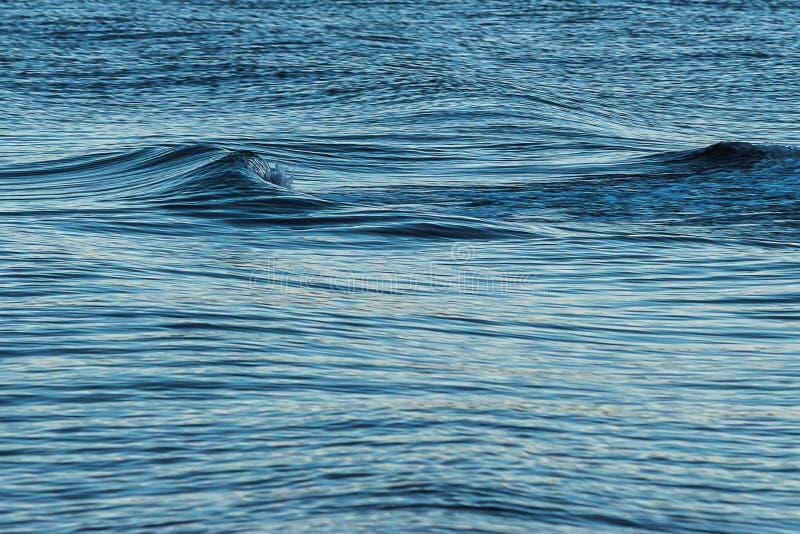 El pequeño túnel de la onda creó por un barco en el agua imagenes de archivo