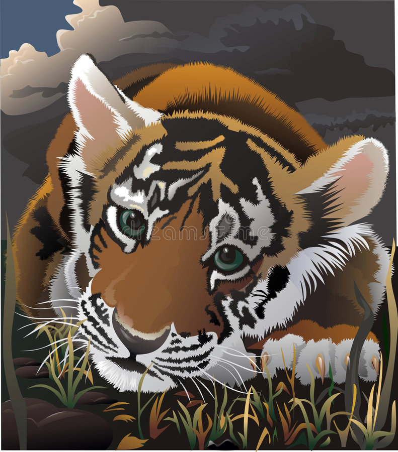 El pequeño tigre que falta que ha perdido a la momia de mum.lost. stock de ilustración