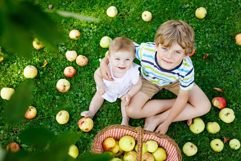 El pequeños bebé y preescolar embroman al muchacho que juega en huerta del manzano imagenes de archivo