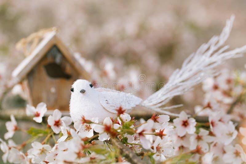 El pequeños pájaro y pajarera en primavera con la cereza del flor florecen s imagenes de archivo