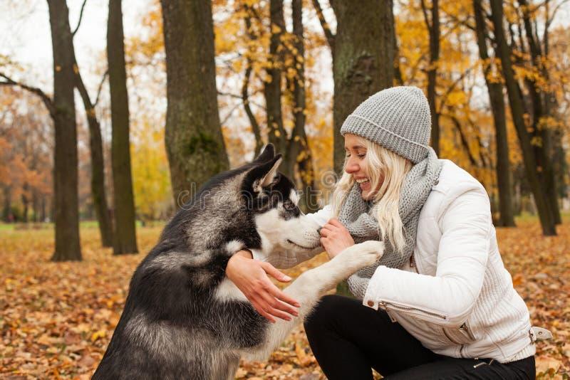 El perro da a mujer la pata en parque del otoño al aire libre foto de archivo libre de regalías
