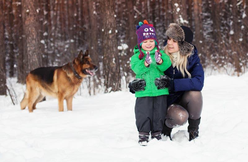 El perro de la familia y de pastor alemán en invierno parquea fotografía de archivo libre de regalías