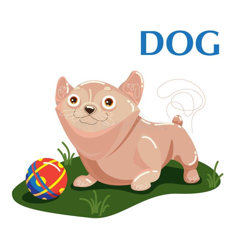El perro educativo del flashcard juega con la bola en la hierba libre illustration