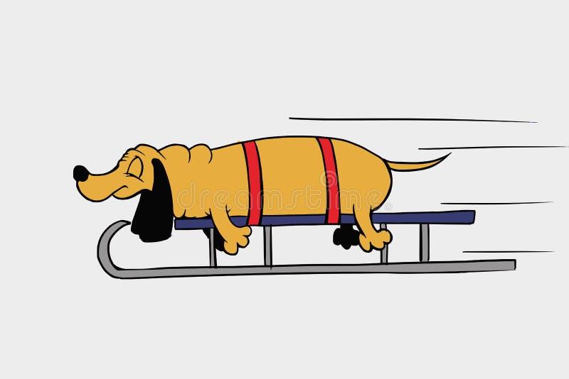 El perro está durmiendo el noche del ` s del Año Nuevo imagenes de archivo