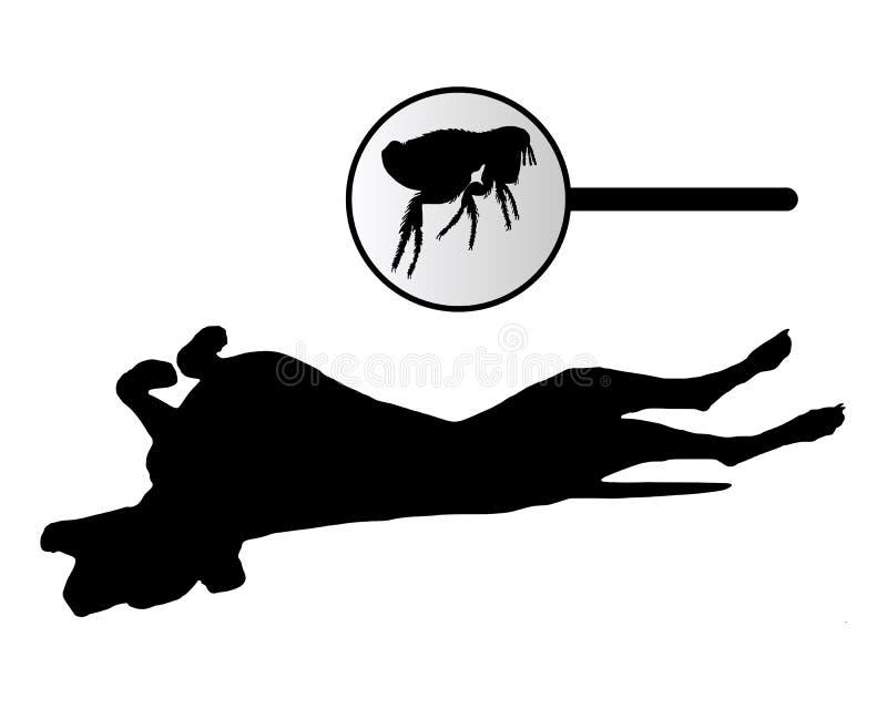 El perro está rasguñando su parte posterior debido a mordedura de pulgas libre illustration