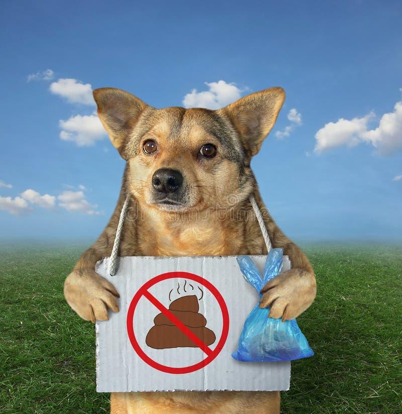 El perro limpió su impulso en el parque imagen de archivo libre de regalías