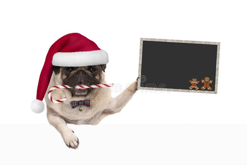 El perro lindo del barro amasado de la Navidad con el sombrero de santa y el bastón de caramelo, sosteniendo blankboard firma ade fotografía de archivo libre de regalías