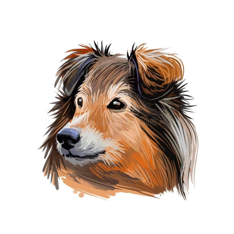 El perro pastor de Shetland engloba el arte digital animal domesticado. Retrato de color canino, mamífero de pelo largo ilustración del vector