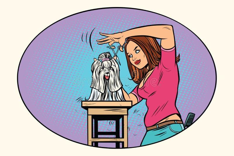 El perro que prepara, peluquero esquila el animal doméstico stock de ilustración