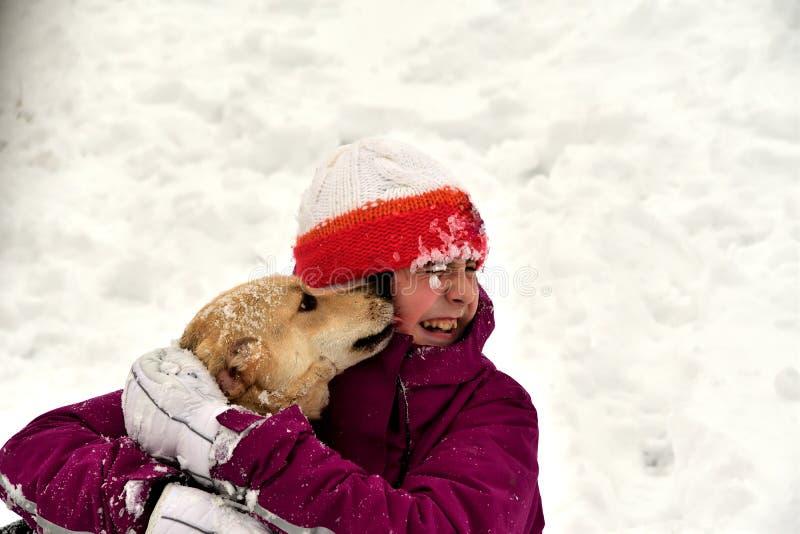 El perro salta para la alegría en la muchacha y se lame la cara fotos de archivo