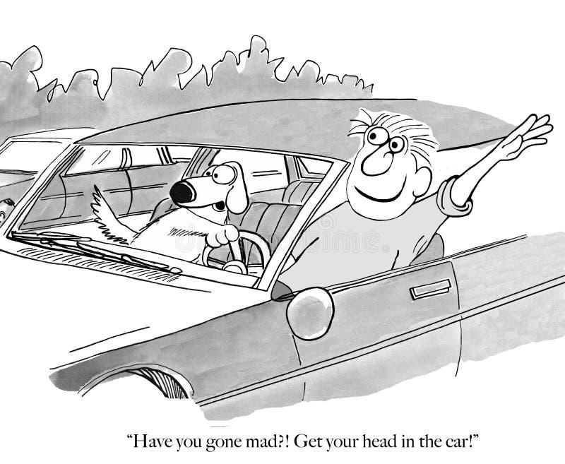 El perro tiene que tomar el volante imagen de archivo libre de regalías
