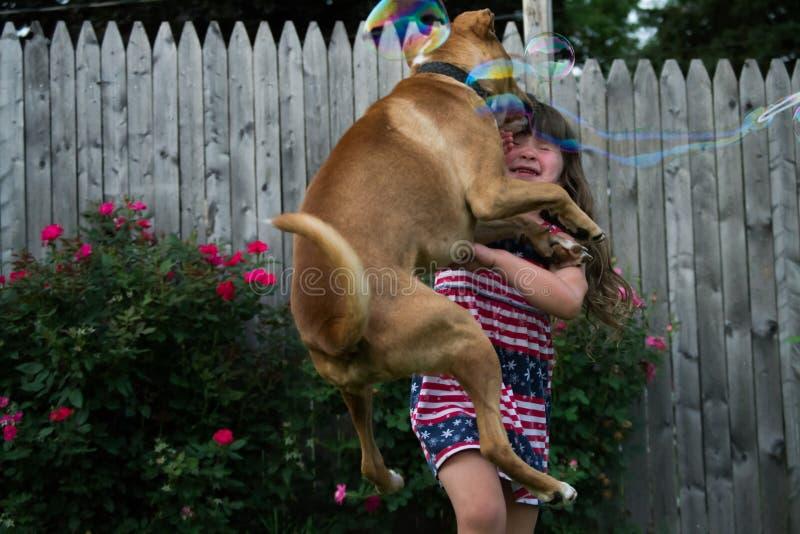 El perro y la muchacha chocan imágenes de archivo libres de regalías