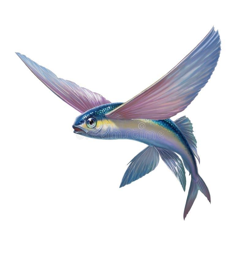 El pez volador que salta en pizca ilustración del vector