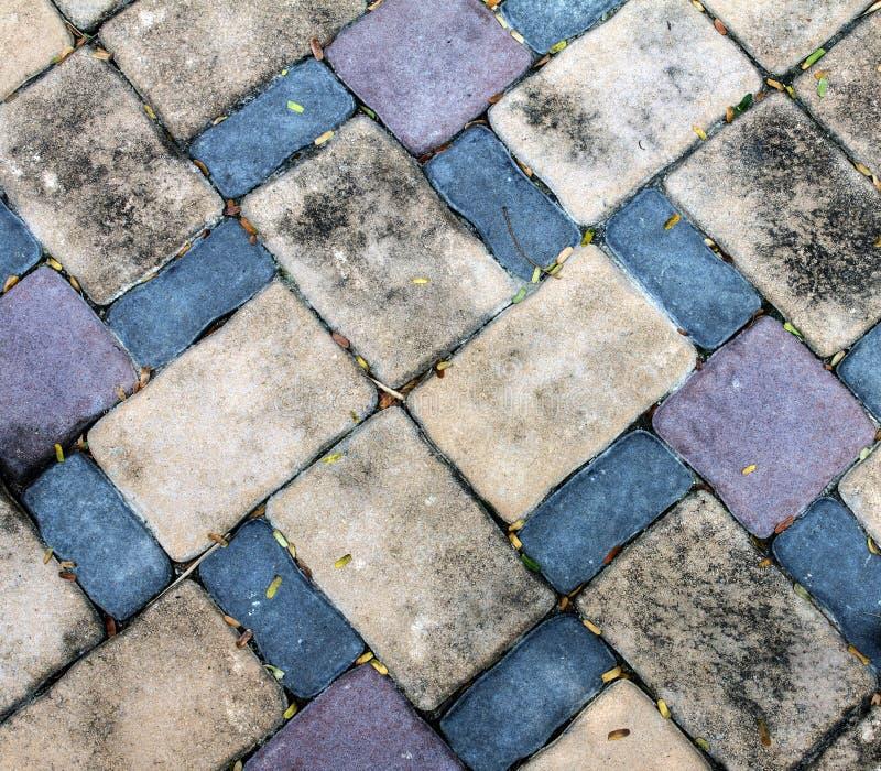 El piso del bloque de la piedra del ladrillo de la suciedad tiene poca hoja secada foto de archivo