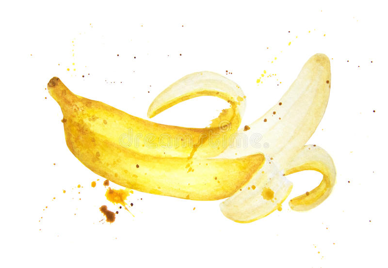El plátano con salpica aislado en el fondo blanco stock de ilustración