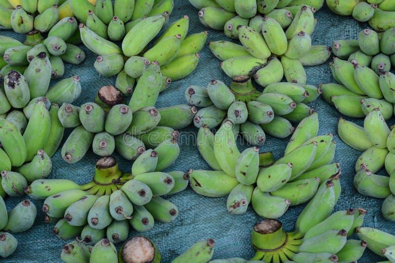 El plátano verde da fruto para la venta en el mercado rural foto de archivo