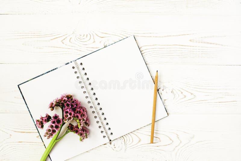 El plano de la primavera pone con flores púrpuras, un cuaderno y un lápiz en una tabla de madera blanca foto de archivo libre de regalías