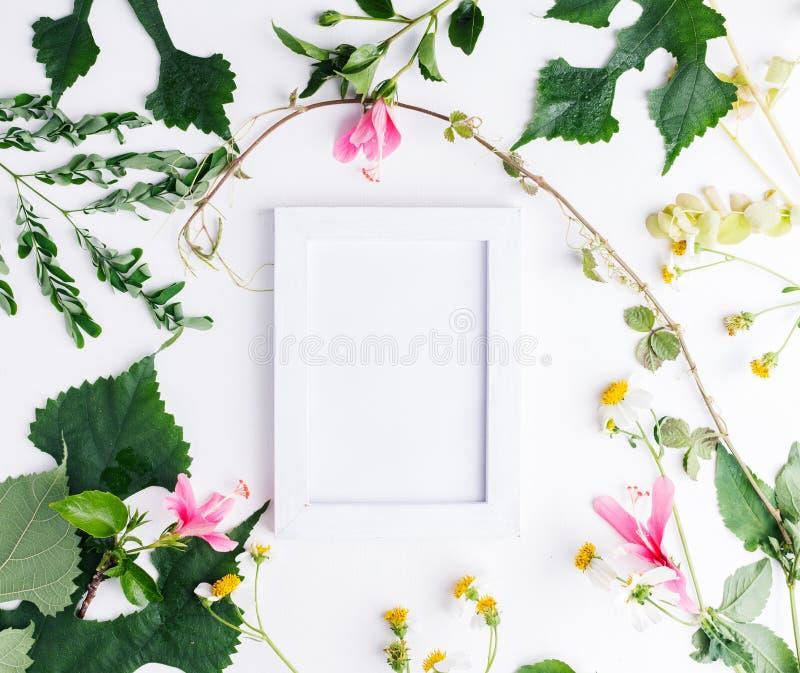 El plano de la visión superior pone el marco vacío de la foto con la maqueta de las hojas del verano y de las flores de la margar foto de archivo
