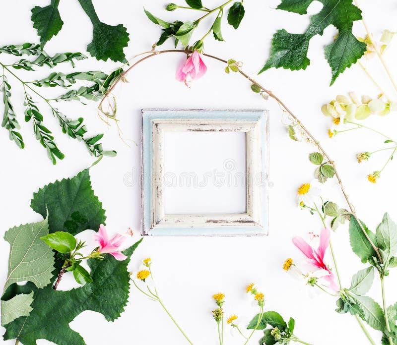 El plano de la visión superior pone el marco vacío de la foto con la maqueta de las hojas del verano y de las flores de la margar imágenes de archivo libres de regalías