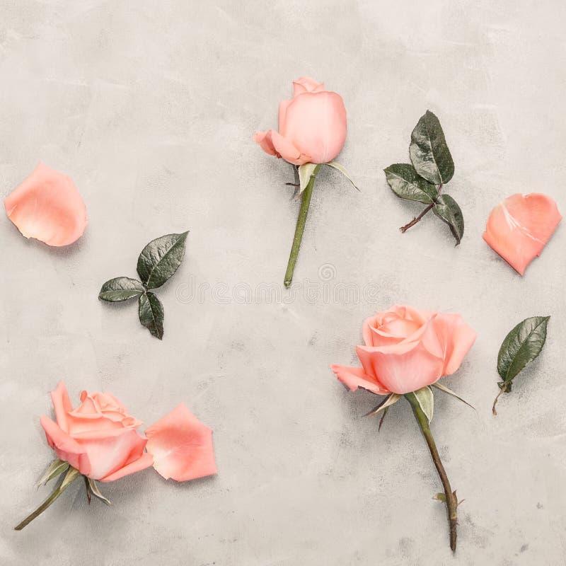 El plano de la visión superior pone rosas rosadas en fondo gris Decoración romántica stock de ilustración
