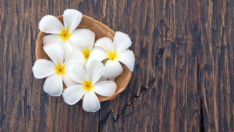 el plumeria florece en una pequeña armadura de cesta en la madera, backgroun del balneario fotos de archivo