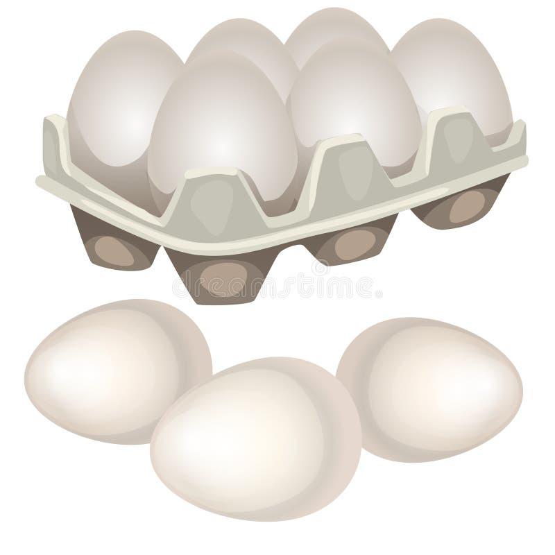 El pollo eggs en una caja de cartón aislada en el fondo blanco Ejemplo del primer de la historieta del vector ilustración del vector