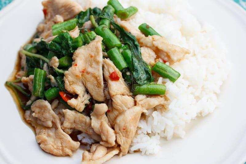 El pollo frió en albahaca santa con la haba del yardlong en el arroz cocido al vapor imagen de archivo